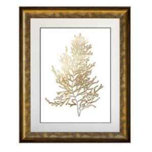 Golden Algae in the frame